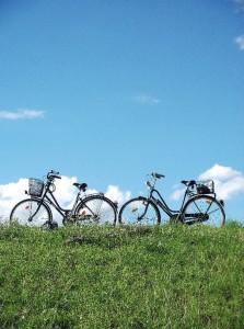 Zwei Fahrräder zwischen Rasen und Himmel