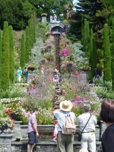 Wunderschöne Wassertreppen umringt von Pflanzen